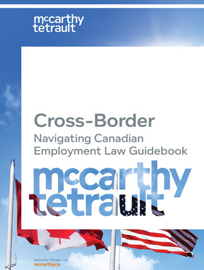 Book cover Cross-Border Labour & Employment Guide 2017