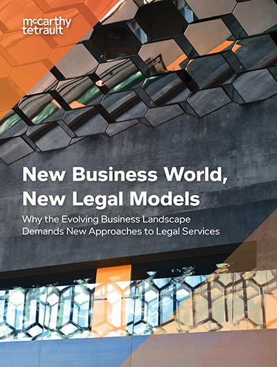 New Business World, New Legal Models Book Cover