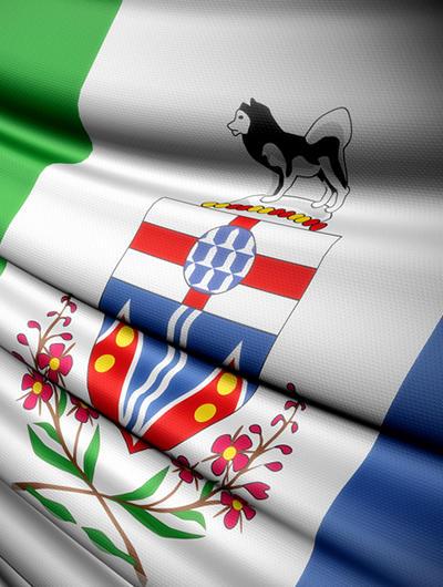 Flag YK
