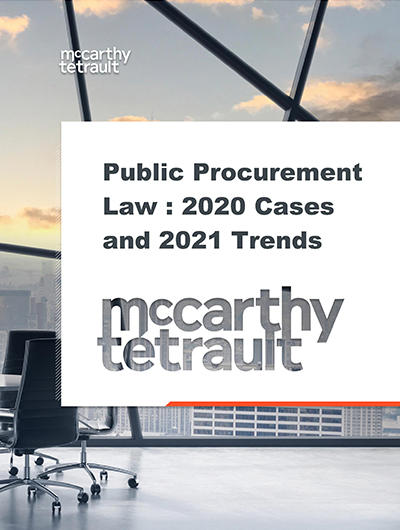 Public Procurement Activity in 2020 Sets the Stage for Trends in 2021